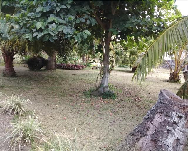 Amutia Resort, West Tanna