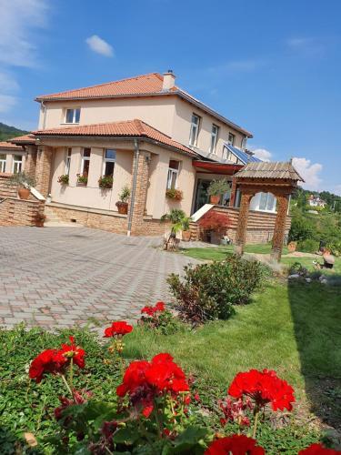 Villa Virag, Pécs