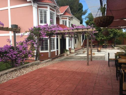Orquidea Limon Suites, Siguatepeque