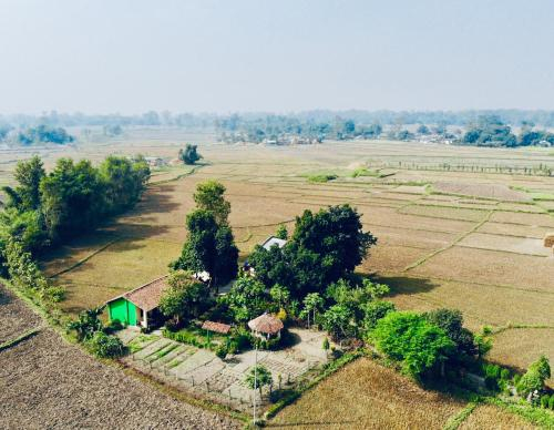 Bardiya Eco Friendly Homestay, Bheri