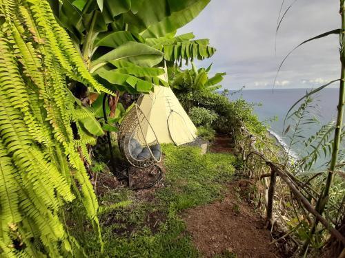 Canto das Fontes - Madeira Glamping, Ponta do Sol
