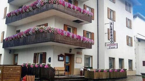 Hotel Erica, Trento