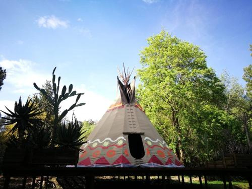 Magical Teepee Experience in Hogsback!, Amathole