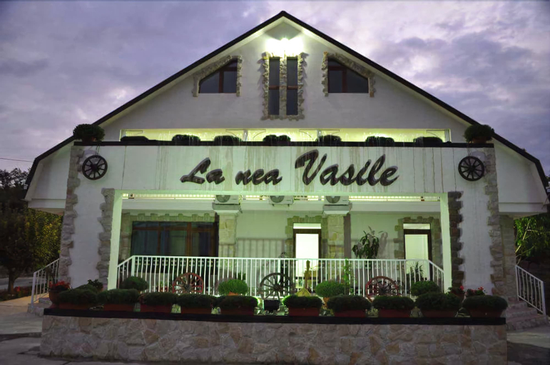 La Nea Vasile, Tutova