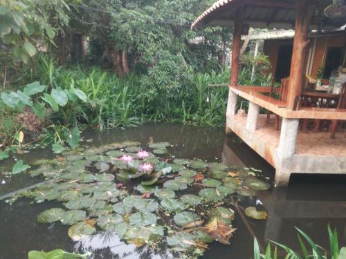 ต้งโฮมหละปูน ณ ตูบคำ, Muang Lamphun