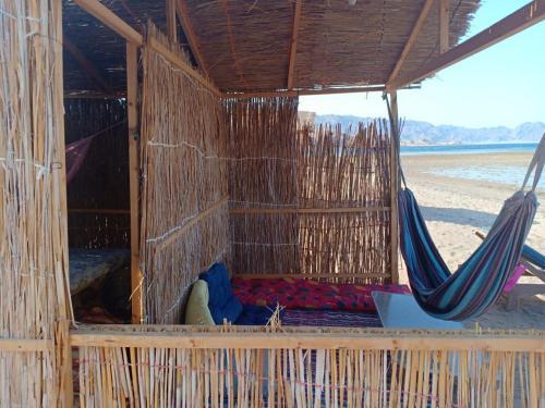 ZION Camp, Nuweiba'