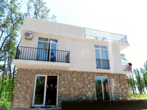 Seven-Bedroom House, Ozurgeti