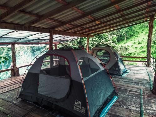 Chiang Dao Jungle, Mae Sai
