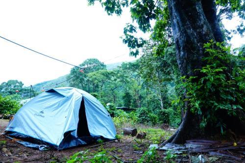 Nelliyampathy Resort & Tent Camp, Palakkad