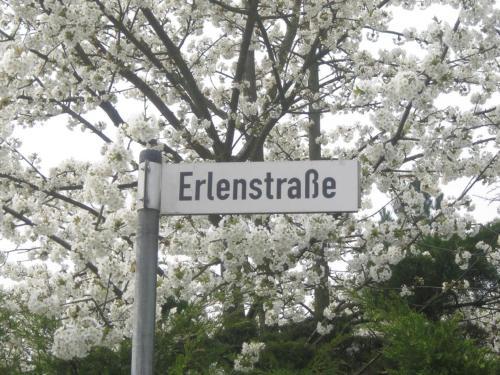 Ramstein Oasis, Kaiserslautern