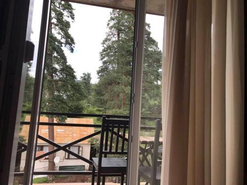 Hotel Mgzavrebi Cottage 4-303, Borjomi