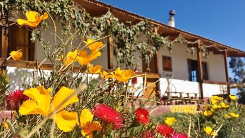 La Chakana Lodge, Parinacota