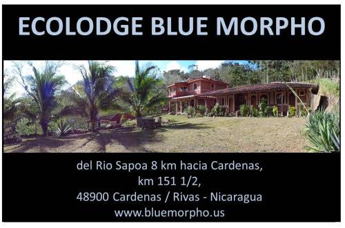 Ecolodge Blue Morpho, Lago de Nicaragua