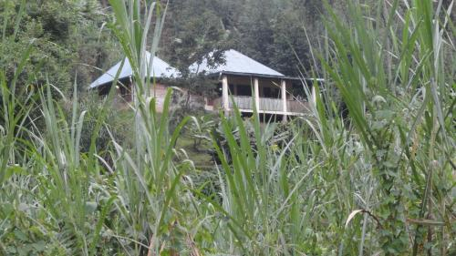 Ruboni Community Camp, Busongora