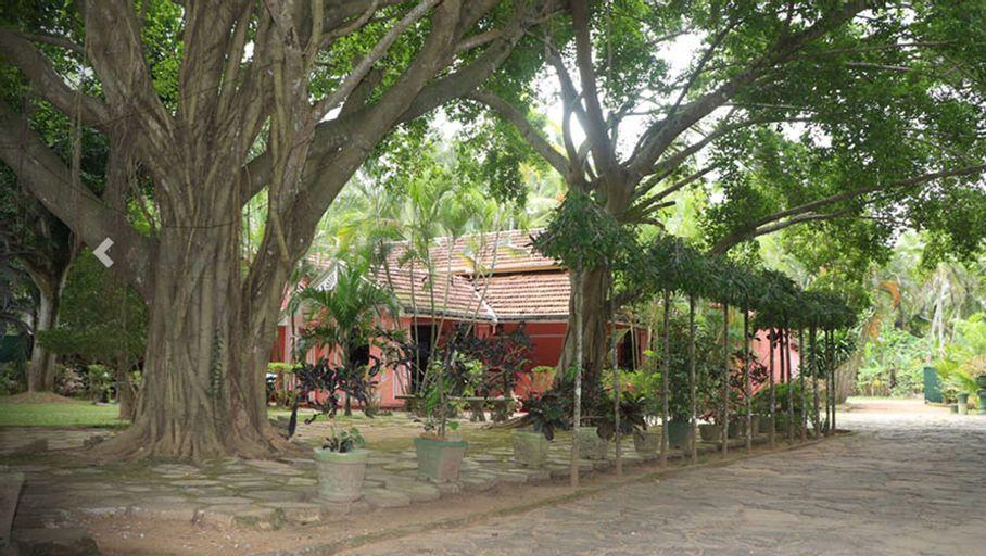 Villa Sunshine Hotel, Dankotuwa