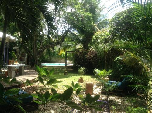 Villa Tropical, Benito Juárez