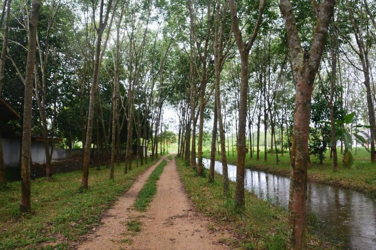 Phetthongtan Garden, Rattaphum