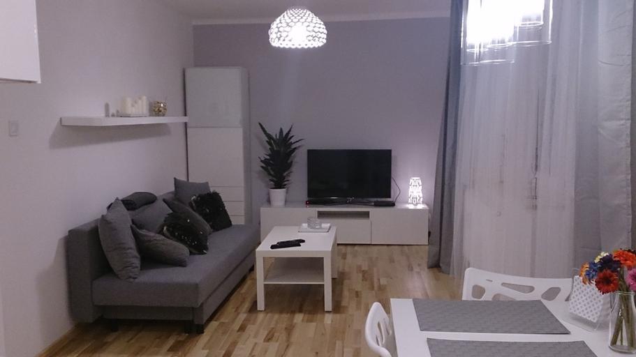 1 bedroom City Center Apartment, Katowice City