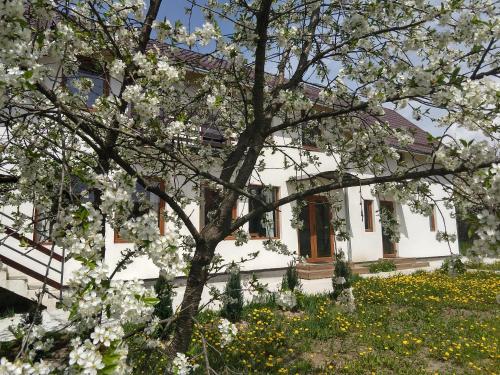 Vendel Guesthouse, Lemnia