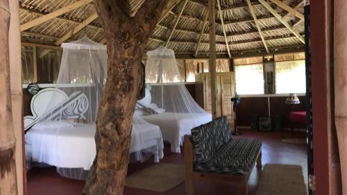 Moringa Ingadi Village,