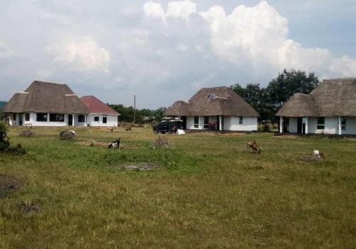 Edward Lake Retreat and Campsite, Kisenyi Village, Bunyaruguru