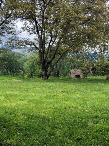 Quiet & cozy chalet in Stebleva, national park., Bulqizës
