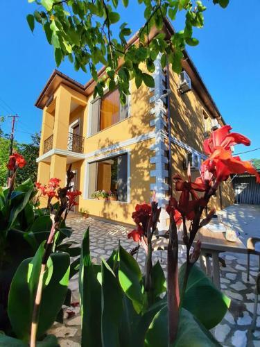 Hotel Alley, Martvili
