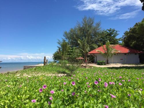 Red Coral Cottage, Langkawi