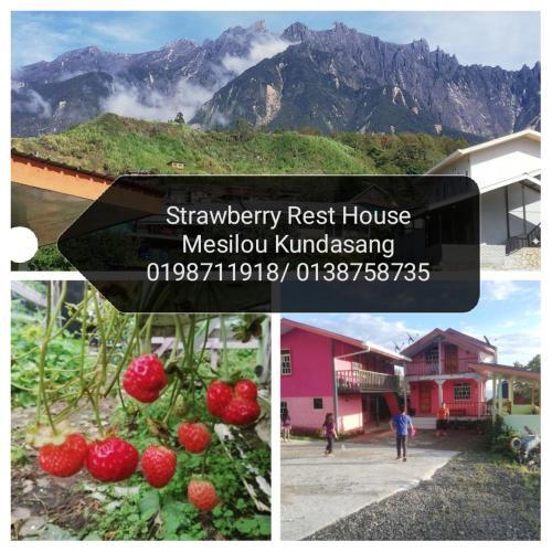 Strawberry Rest House Mesilou Kundasang, Ranau