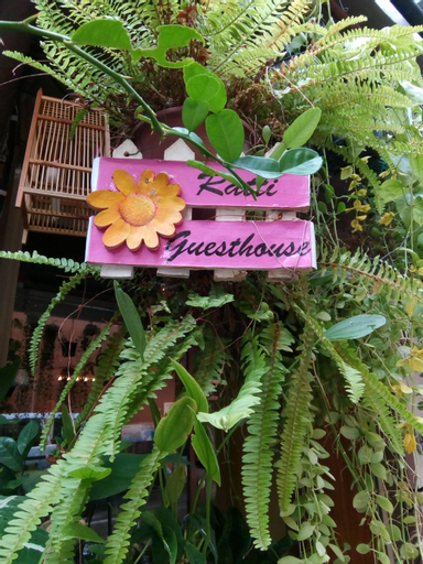 Ratti Guesthouse, Bang Plad