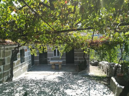 Quinta do Sol - Soutelo, Cinfães