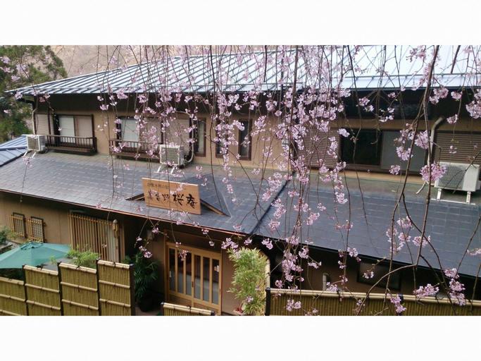 Miyoshino Sakuraan -Yoshino-, Yoshino