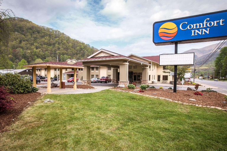 Comfort Inn Great Smokies, Haywood