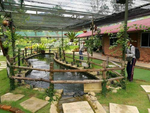 Lovely Homestay Janda Baik, Bentong