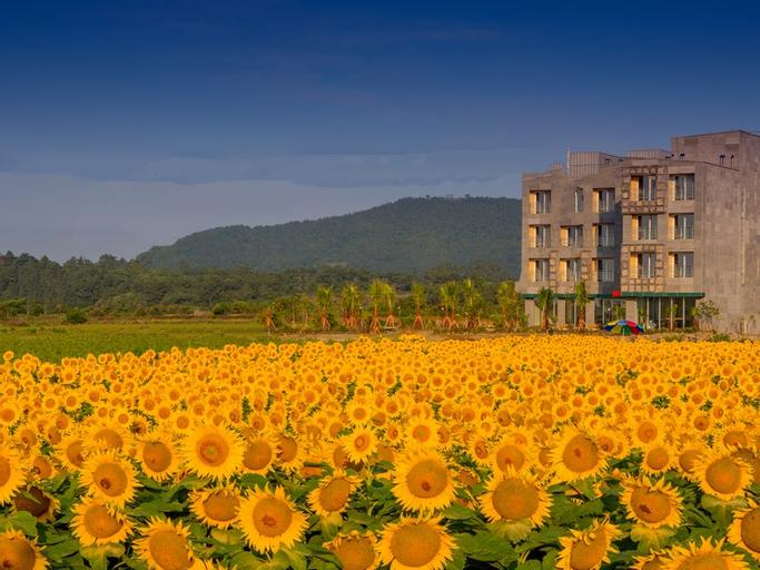 Hotel MCC, Seogwipo
