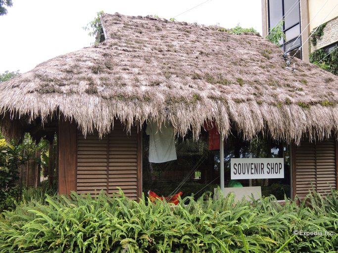Danasan Eco Adventure Park, Danao City