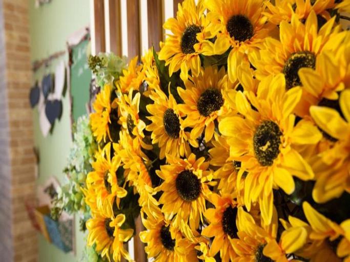 Sun Flower Bed and Breakfast, Hualien