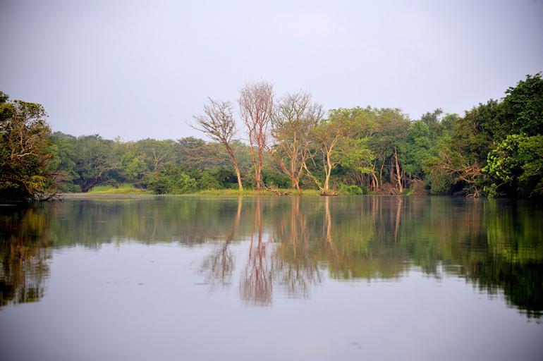 The Backwaters, Vanathavilluwa