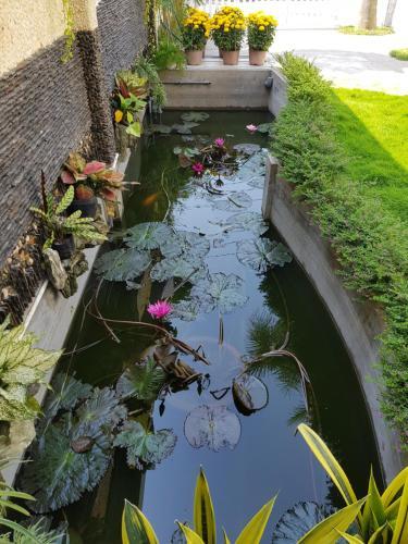 HOMESTAY VILLA, Chau Doc