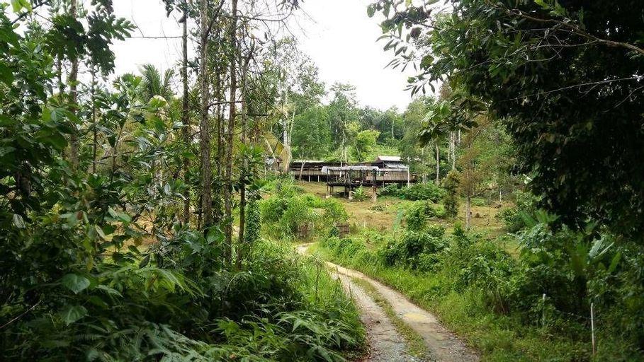 drmind farm, Jelebu