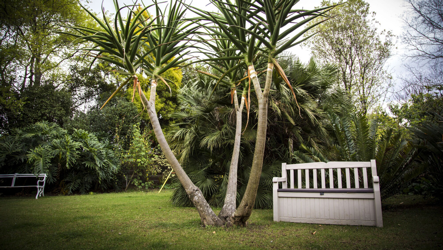 Sunbird Guest House, Umgungundlovu
