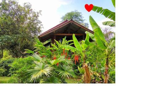 Pencave Homestay, Pang Ma Pha