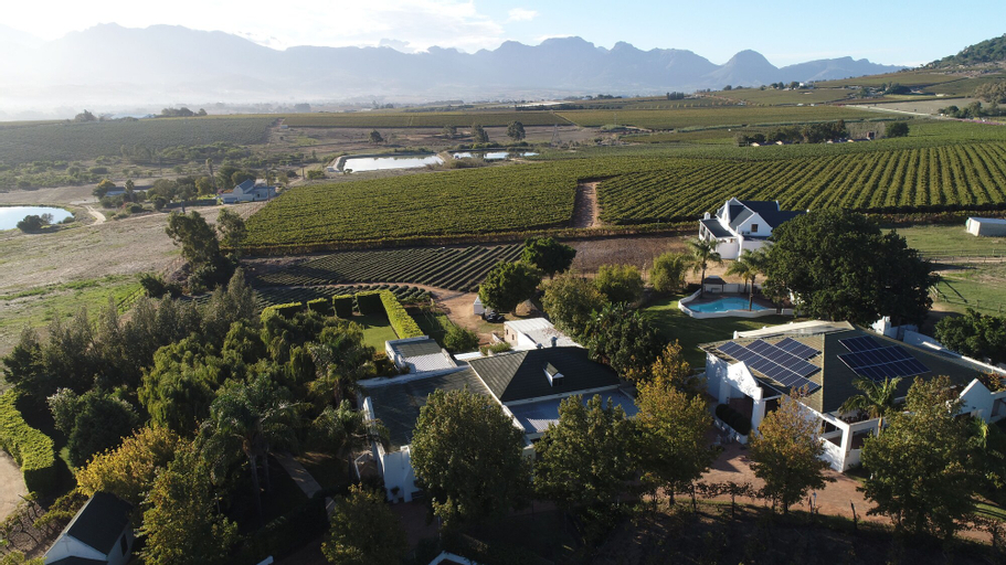 Zonnevanger, Cape Winelands