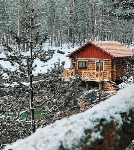 Forest House, El'brusskiy rayon