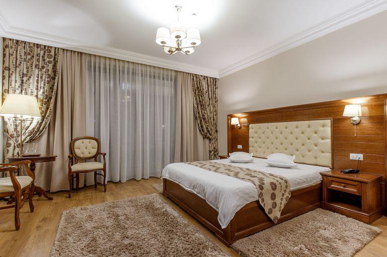 Hotel Gabriela, Viseu De Sus