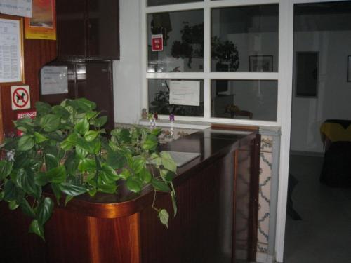 Residencial A Doca, Faro