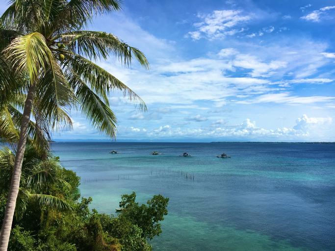 Sandingan Dive Resort, Loon