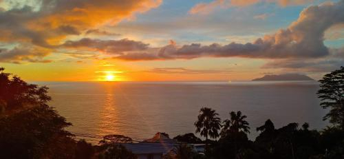 Truly magical Sunsets at L'Ocean,