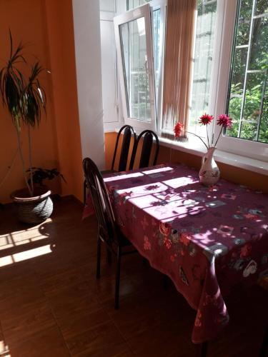Apartment on Abazgaa 53/4, Gagra