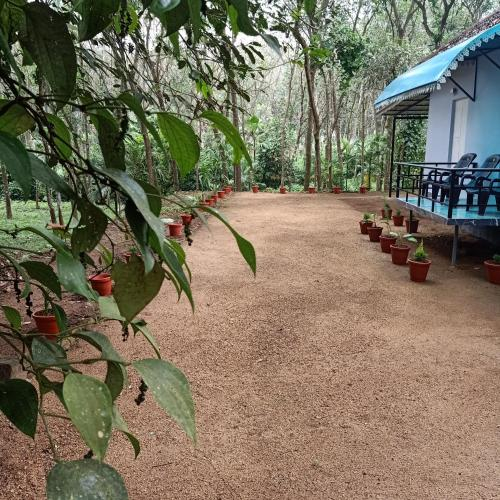 Chullikandam Forest Vacation Home, Ernakulam